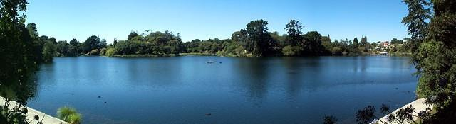 Virginia Lake Panorama